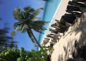 4-seychelske-ostrovy-v-juli-2016-081.jpg
