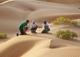 abu-dhabi-hotel-qasr-al-sarab-desert-resort-034.jpg