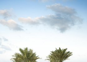 abu-dhabi-hotel-the-st-regis-saadiyat-island-resort-043.jpg