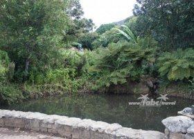 afrika-duben-2011-021.jpg