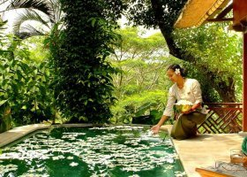 bali-hotel-kupu-kupu-barong-villas-and-tree-spa-006.jpg