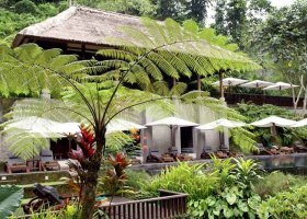 bali-hotel-maya-ubud-017.jpg