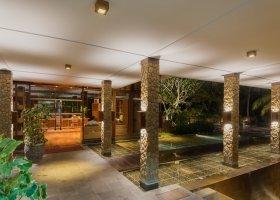bali-hotel-the-samaya-ubud-039.jpg