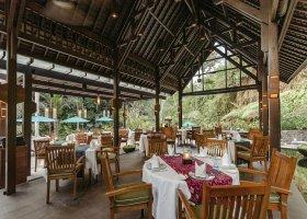 bali-hotel-the-samaya-ubud-048.jpg