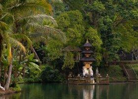 bali-hotel-the-samaya-ubud-087.jpg