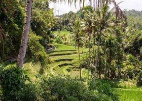 bali-ostrov-bohu-a-lombok-010.jpg