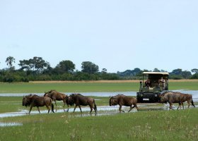 botswana-hotel-jao-camp-premier-027.jpg
