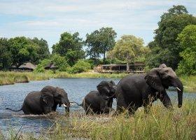 botswana-hotel-kings-pool-camp-045.jpg