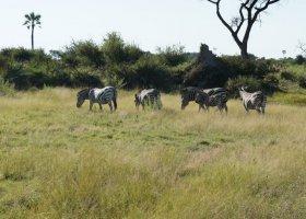 botswana-hotel-kwetsani-camp-007.jpg