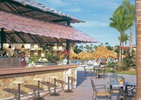 dominikanska-republika-hotel-dreams-punta-cana-080.jpg