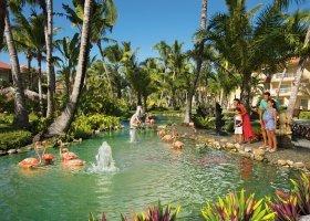 dominikanska-republika-hotel-dreams-punta-cana-090.jpg
