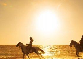 dominikanska-republika-hotel-secrets-royal-beach-075.jpg