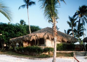 dominikanska-republika-hotel-viva-wyndham-dominicus-beach-002.jpg