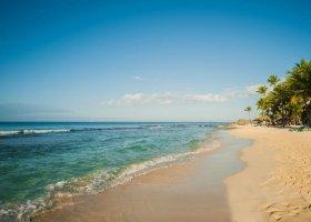 dominikanska-republika-hotel-viva-wyndham-dominicus-beach-016.jpg