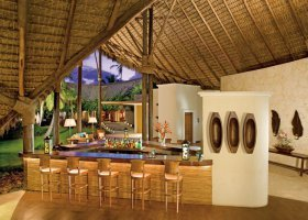 dominikanska-republika-hotel-zo-try-agua-punta-cana-003.jpg