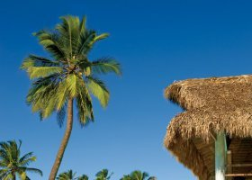 dominikanska-republika-hotel-zo-try-agua-punta-cana-006.jpg