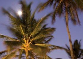 dominikanska-republika-hotel-zo-try-agua-punta-cana-014.jpg