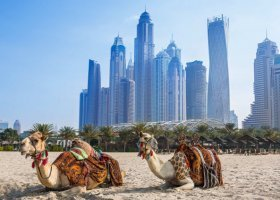 dubaj-hotel-habtoor-grand-beach-resort-spa-054.jpg