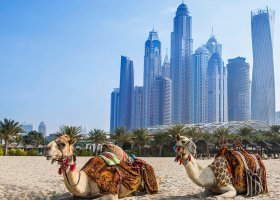 dubaj-hotel-habtoor-grand-beach-resort-spa-147.jpg