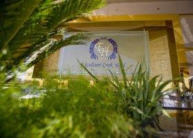 dubaj-hotel-holiday-inn-bur-dubai-033.jpg