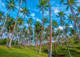 fidzi-hotel-matangi-private-island-resort-031.jpg