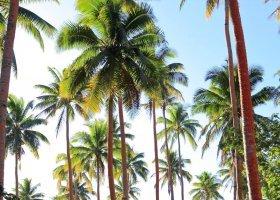 fidzi-hotel-matangi-private-island-resort-041.jpg