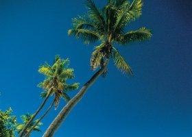 fidzi-hotel-plantation-island-resort-002.jpg