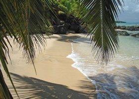fidzi-hotel-taveuni-palms-029.jpg
