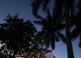 fiji-februar-2010-002.jpg