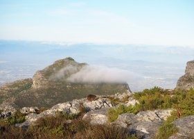 jihoafricka-republika-cesta-nabita-neuveritelnymi-zazitky-014.jpg