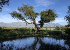 jihoafricka-republika-cesta-nabita-neuveritelnymi-zazitky-015.jpeg