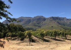 jihoafricka-republika-cesta-nabita-neuveritelnymi-zazitky-024.jpeg