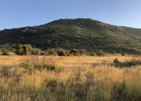 jihoafricka-republika-cesta-nabita-neuveritelnymi-zazitky-055.jpeg