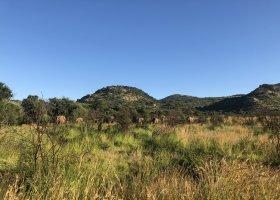 jihoafricka-republika-cesta-nabita-neuveritelnymi-zazitky-056.jpeg