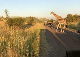jihoafricka-republika-cesta-nabita-neuveritelnymi-zazitky-058.jpeg