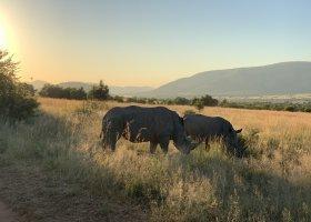 jihoafricka-republika-cesta-nabita-neuveritelnymi-zazitky-059.jpg