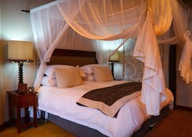 jihoafricka-republika-hotel-amakhosi-safari-lodge-035.jpg
