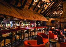 jihoafricka-republika-hotel-bakubung-lodge-019.jpg