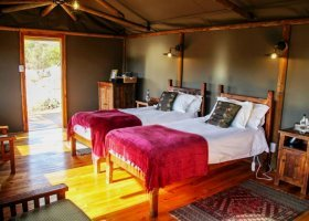 jihoafricka-republika-hotel-buffelsdrift-game-lodge-009.jpg