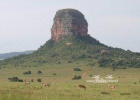 juhoafricka-republika-januar-2011-012.jpg
