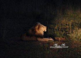 juhoafricka-republika-januar-2011-022.jpg