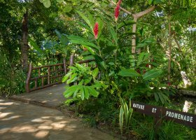 madagaskar-hotel-ravintsara-021.jpg