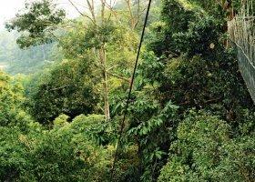 malajsie-021.jpg
