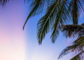 maledivy-hotel-amilla-fushi-070.jpg