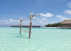 maledivy-hotel-anantara-dhigu-resort-136.jpg
