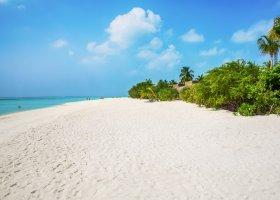 maledivy-hotel-cocoon-maldives-192.jpg
