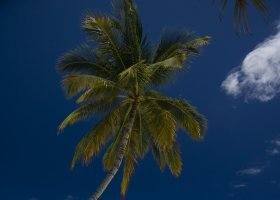 maledivy-hotel-conrad-rangali-island-069.jpg