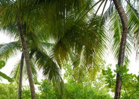 maledivy-hotel-conrad-rangali-island-116.jpg