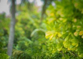 maledivy-hotel-conrad-rangali-island-118.jpg