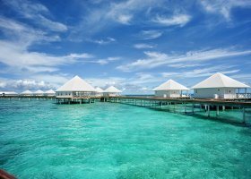 maledivy-hotel-diamonds-thudufushi-111.jpg